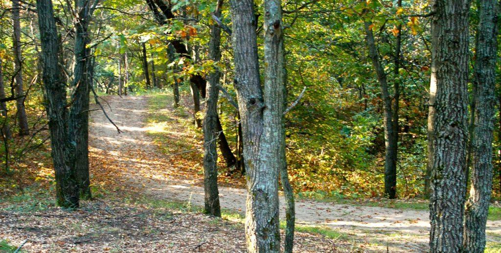 natural trail at bunker park