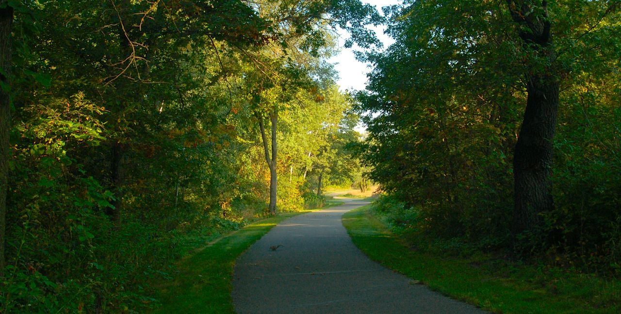 hiking trail at bunker park