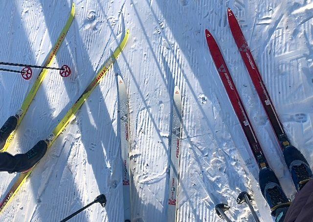 skiing bunker park