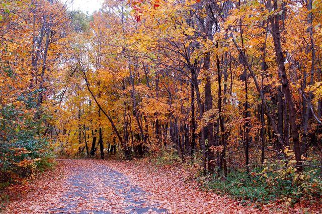 biking elm creek park reserve
