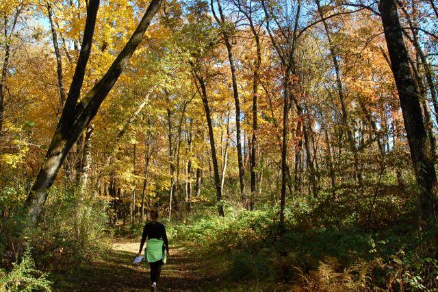 hiking william o'brien state park