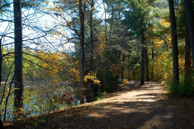 Riverside Trail William O'Brien campground