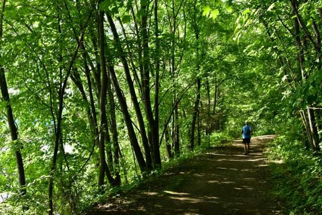 south river trail afton state park