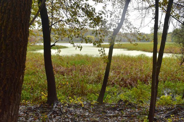 MN Valley Nat'l Wildlife Refuge hike