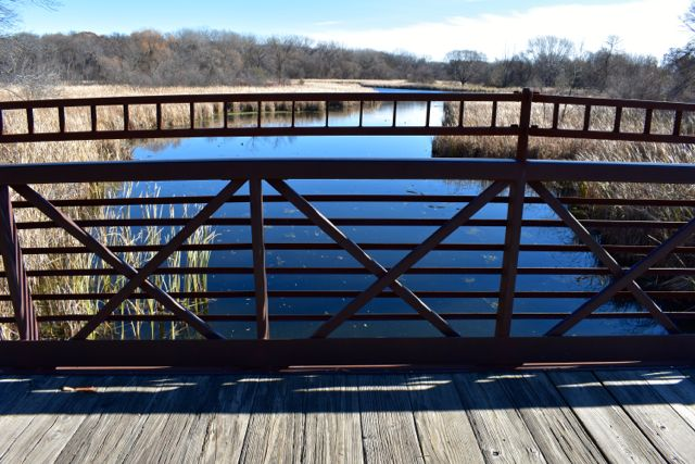 bridge at french park