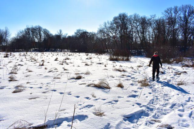 snowshoe bunker park