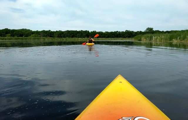 kayakers on rice creek water trail