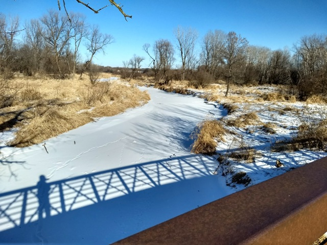 frozen rice creek