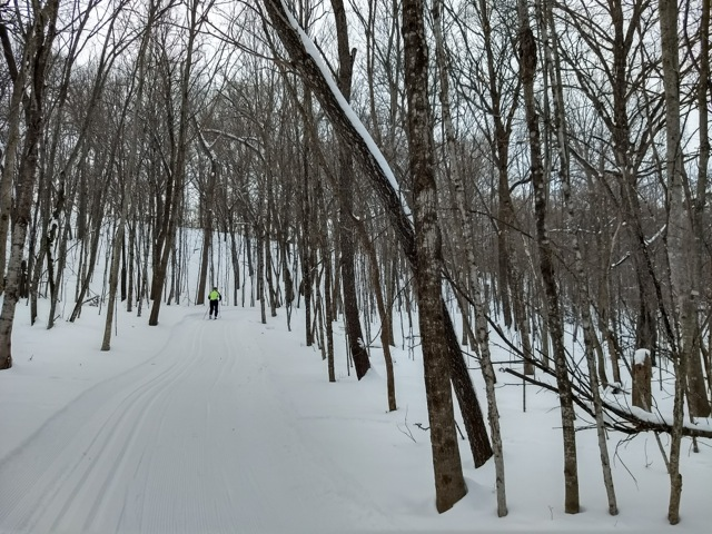 cross country ski in Wild River State Park
