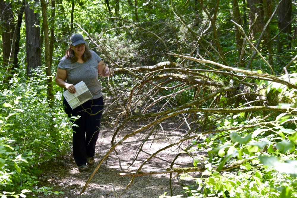 hiking st croix bluffs regional park