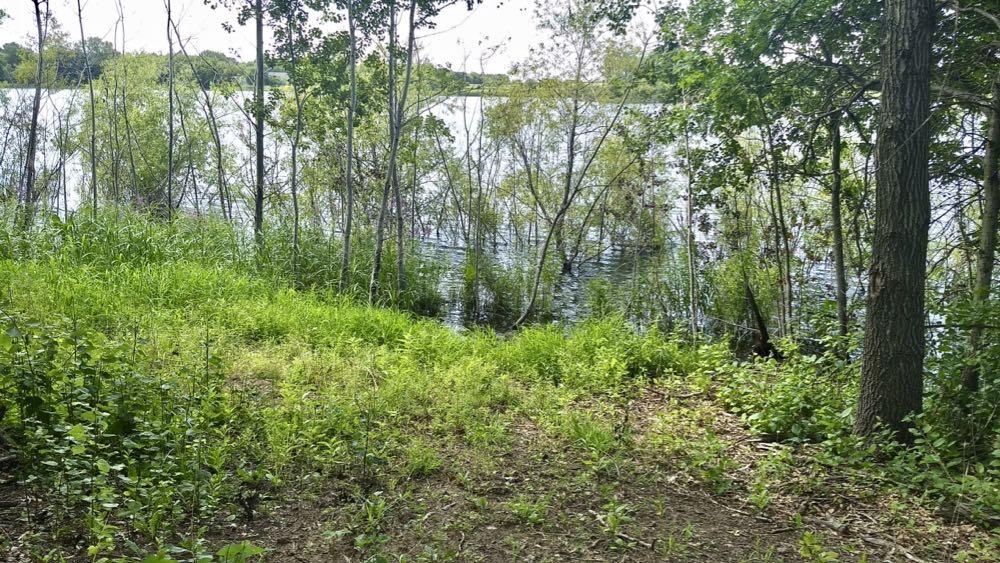 louise lake, pine point regional park