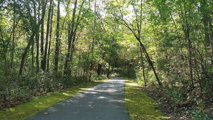 wooded bike trail in hyland lake park reserve