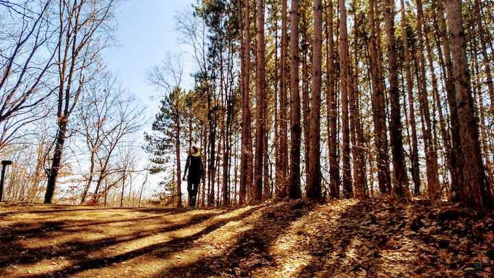 hiking at lake elmo park reserve