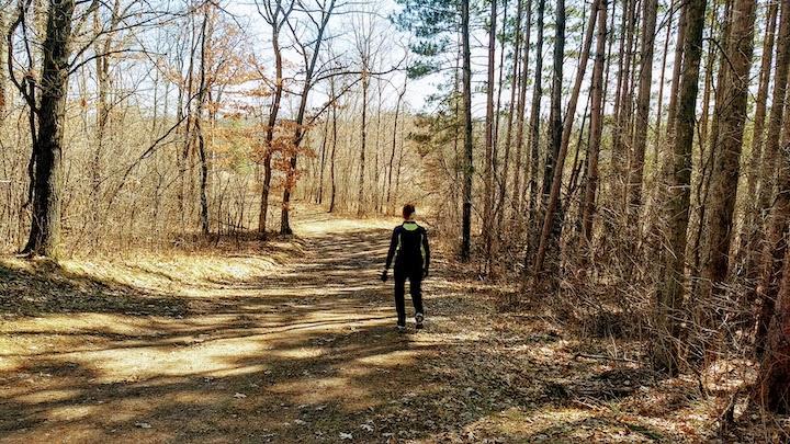 natural-surface trail at Lake Elmo Park Reserve