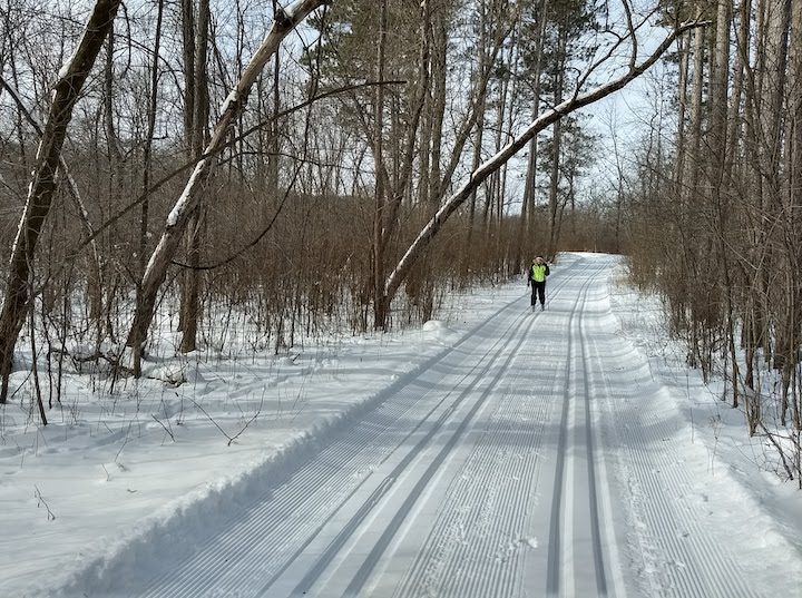 cross country skier at wild river state park